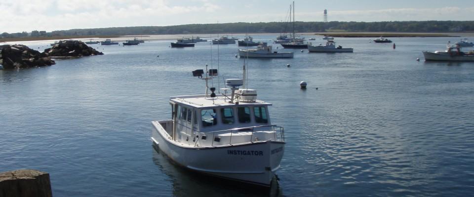 Maine Fishing Charter